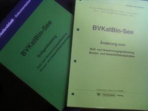 BVKatBin-See